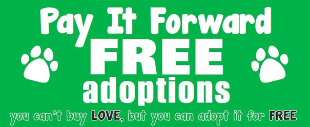 Pay It Forward Free Adoptions